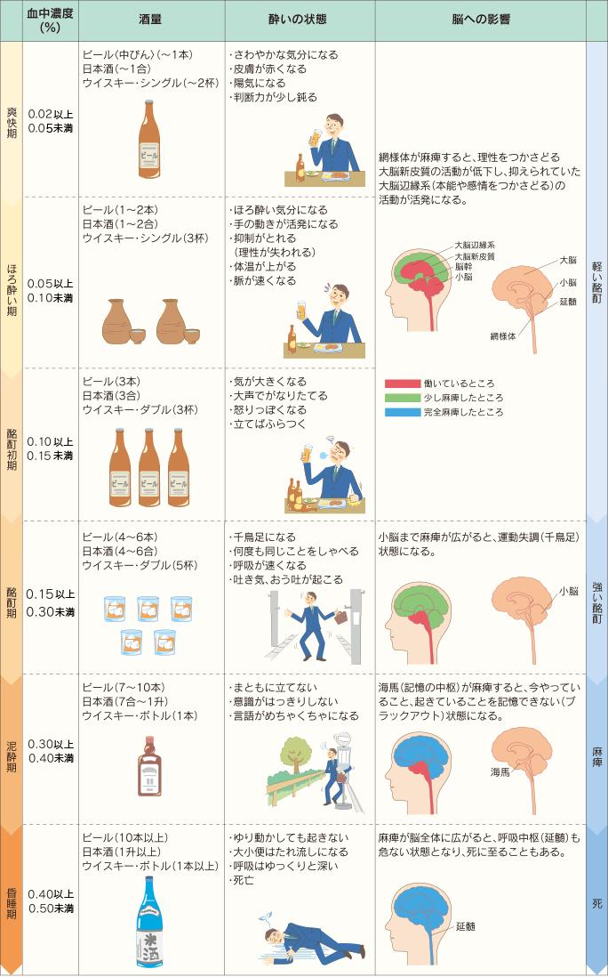 酔いの進行と血中アルコール濃度の深い関係。 ■爽快期:・さわやかな気分になる・皮膚が赤くなる・陽気になる・判断力が少し鈍る。 ■ほろ酔い期:・ほろ酔い気分になる・手の動きが活発になる・抑制がとれる(理性が失われる)・体温が上がる・脈が速くなる ■酩酊初期:・気が大きくなる・大声でがなりたてる・怒りっぽくなる・立てばふらつく 脳への影響:網様体が麻痺すると、理性をつかさどる大脳新皮質活動が低下し、抑えられていた大脳辺縁系 (本能や感情をつかさどる)の活動がが活発になる。 ■酩酊期:・千鳥足になる・何度も同じことをしゃべる・呼吸が速くなる・吐き気、おう吐が起こる。脳への影響:小脳まで麻痺が広がると、運動失調(千鳥足)状態になる。 ■泥酔期:・まともに立てない・意識がはっきりしない・言語がめちゃくちゃになる。脳への影響:海馬(記憶の中枢)が麻痺すると、今やっていること、起きていることを記憶できない(ブラックアウト) 状態になる。 ■昏睡期:・ゆり動かしても起きない・大小便はたれ流しになる・呼吸はゆっくりと深い・死亡。脳への影響:麻痺が脳全体に広がると、呼吸中枢(延髄)も危ない状態となり、死に至ることもある。